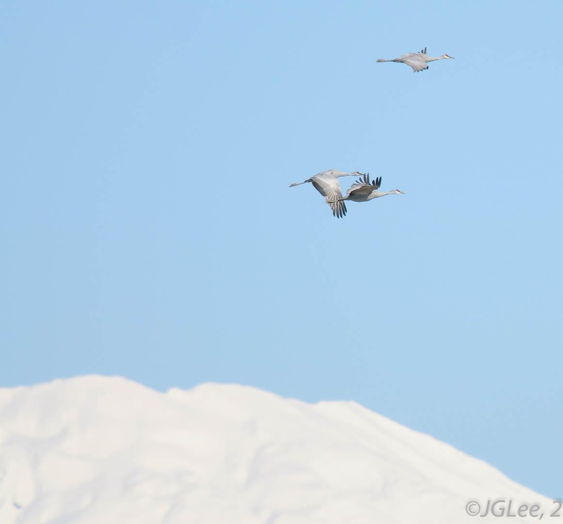 SandHills Over St. Helens