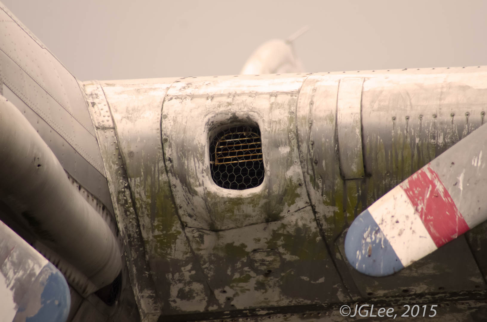 B17 wing and propeller
