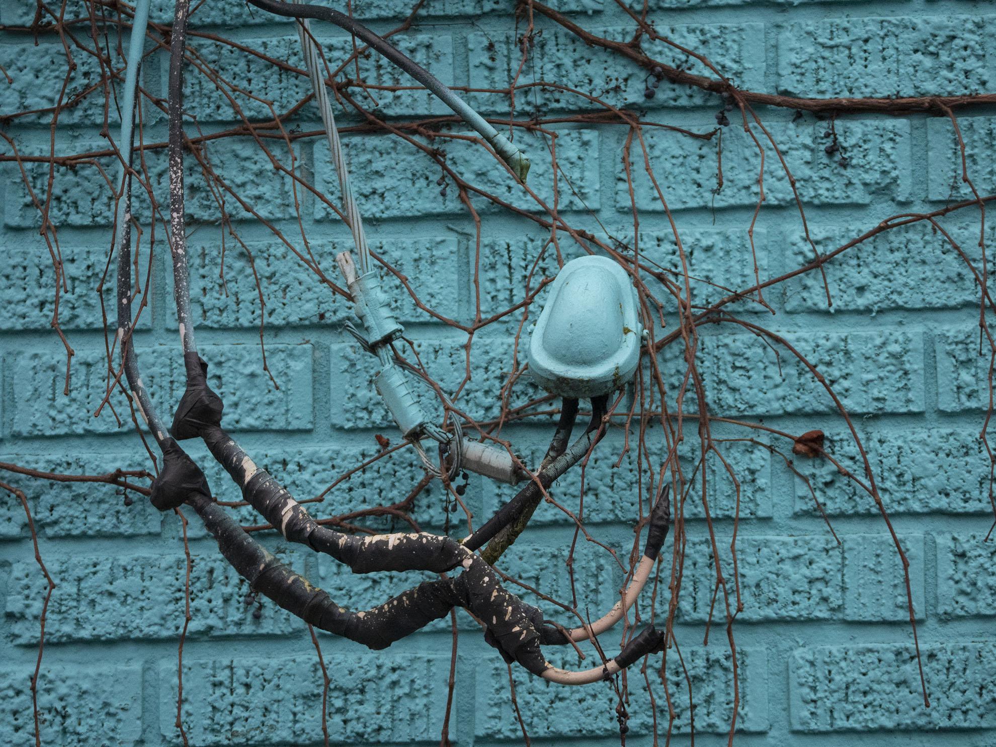 Vines-Wires