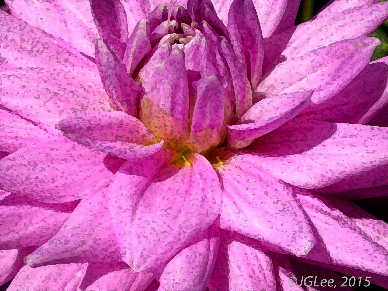 Gail's Flower