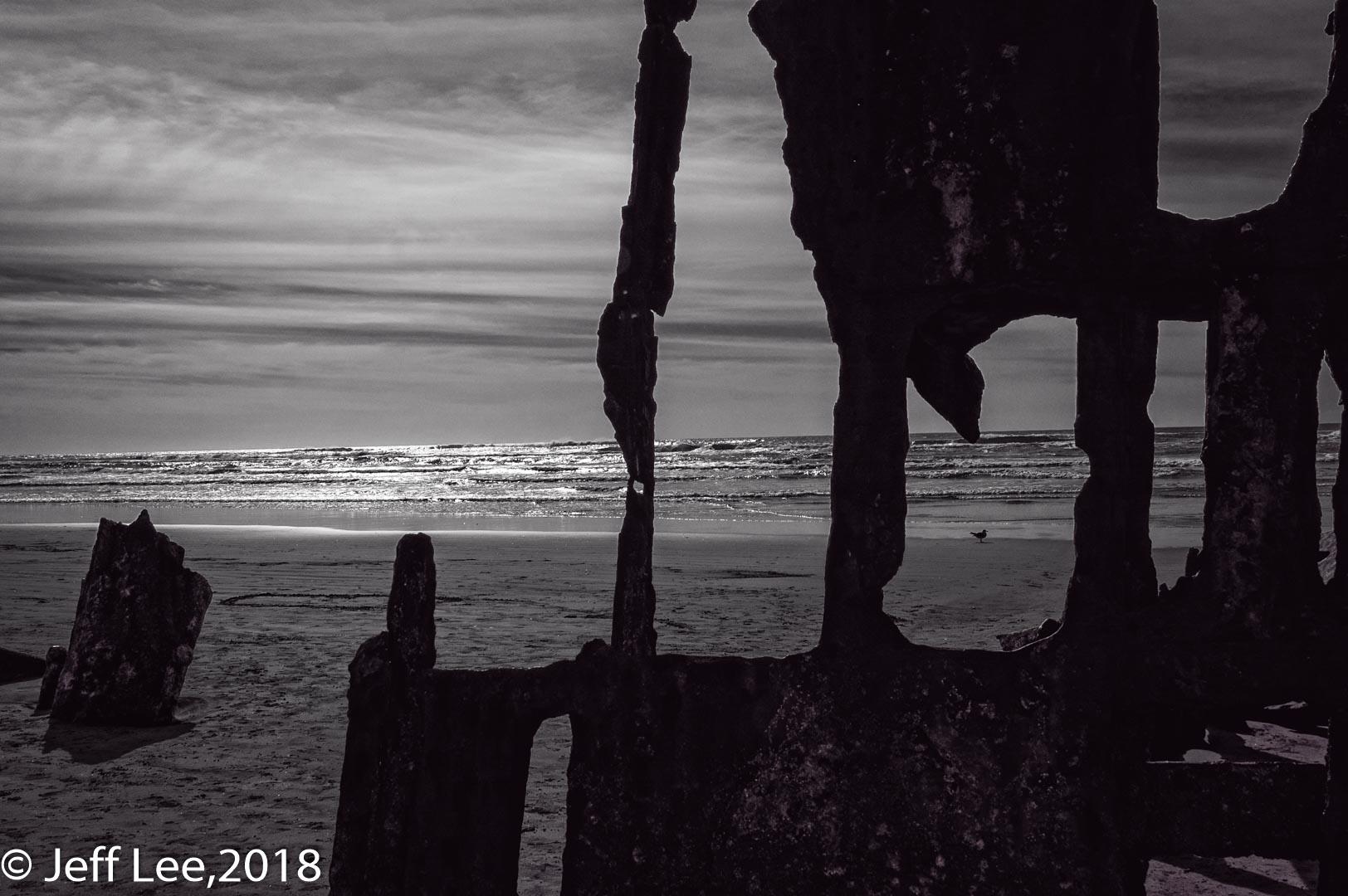 D70_0086-Edit