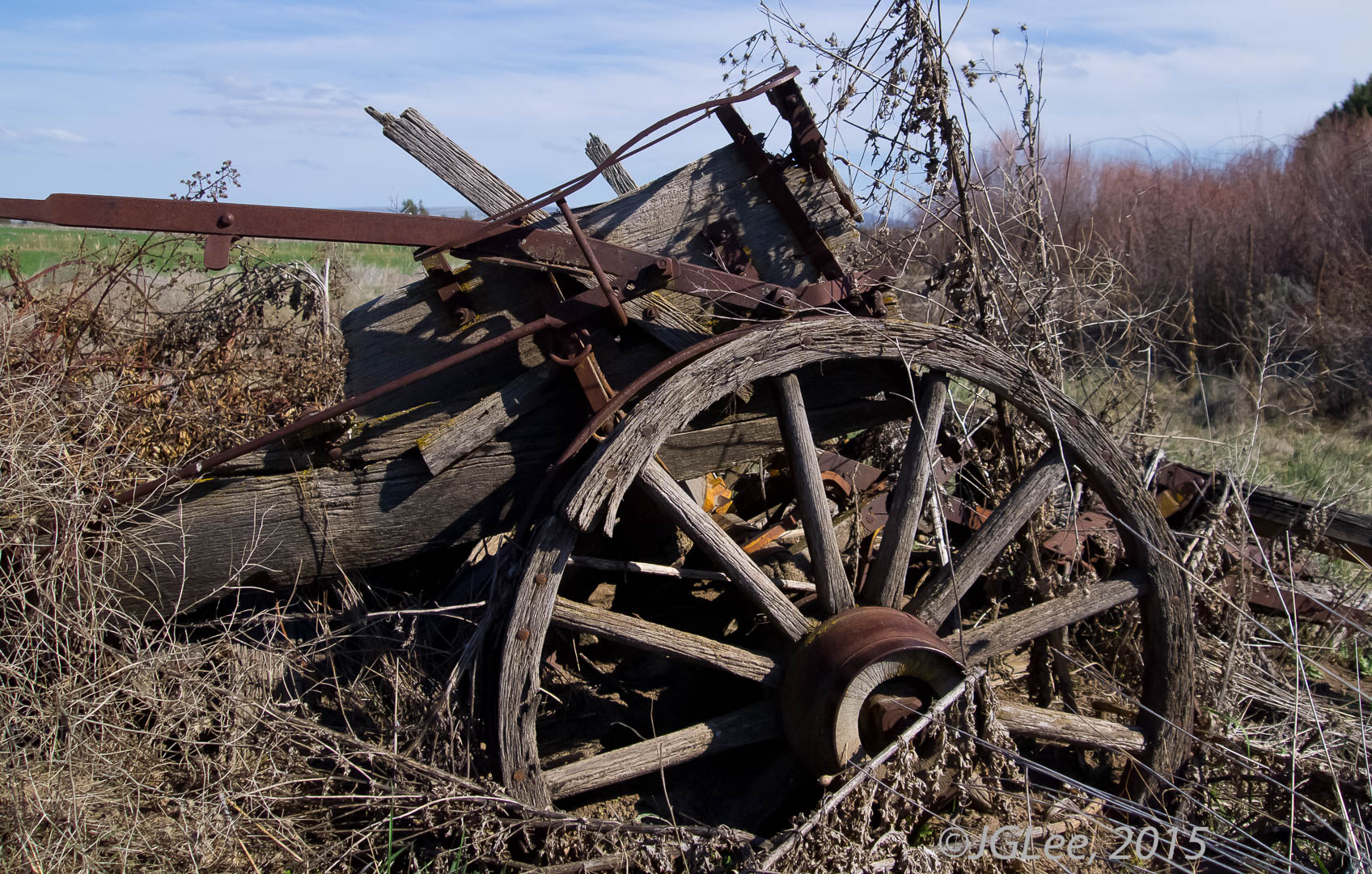 Wagon Remains